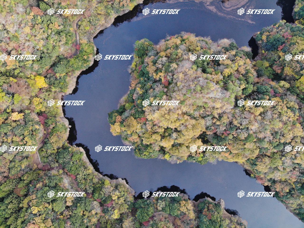 紅葉 竜神峡
