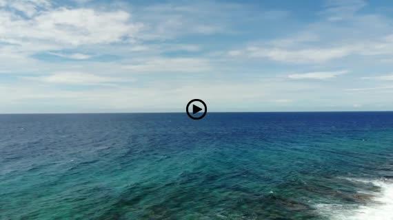 グアム海 2 coco palm garden beach