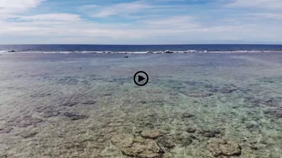 グアム海 8 coco palm garden beach