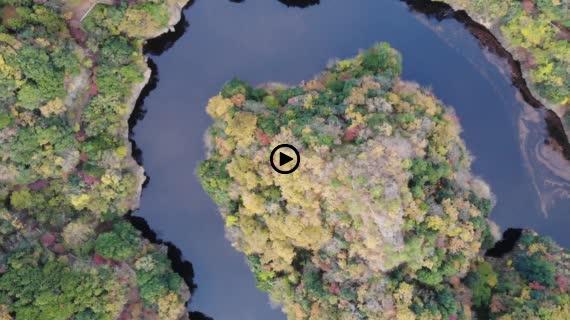 紅葉 上空からの回転映像 竜神峡